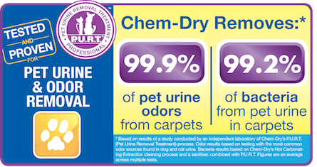 Chem-Dry Select removes 99.9% of pet urine odors from carpets and 99.2% of bacteria from pet urine in carpets in Arlington WA