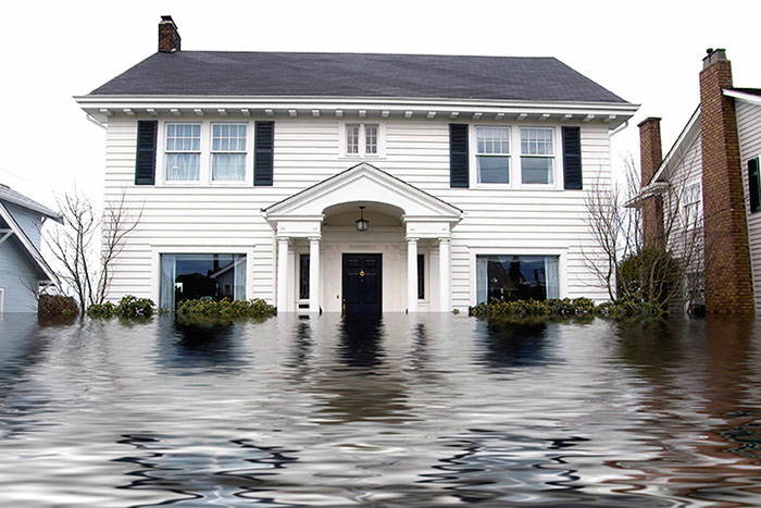 Chem-Dry Select Provides Water Damage Restoration Services for Arlington WA