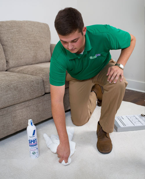 Specialty carpet Stain Removal used by a trusted Chem-Dry Select Technician gets rid of carpet stains in Arlington WA