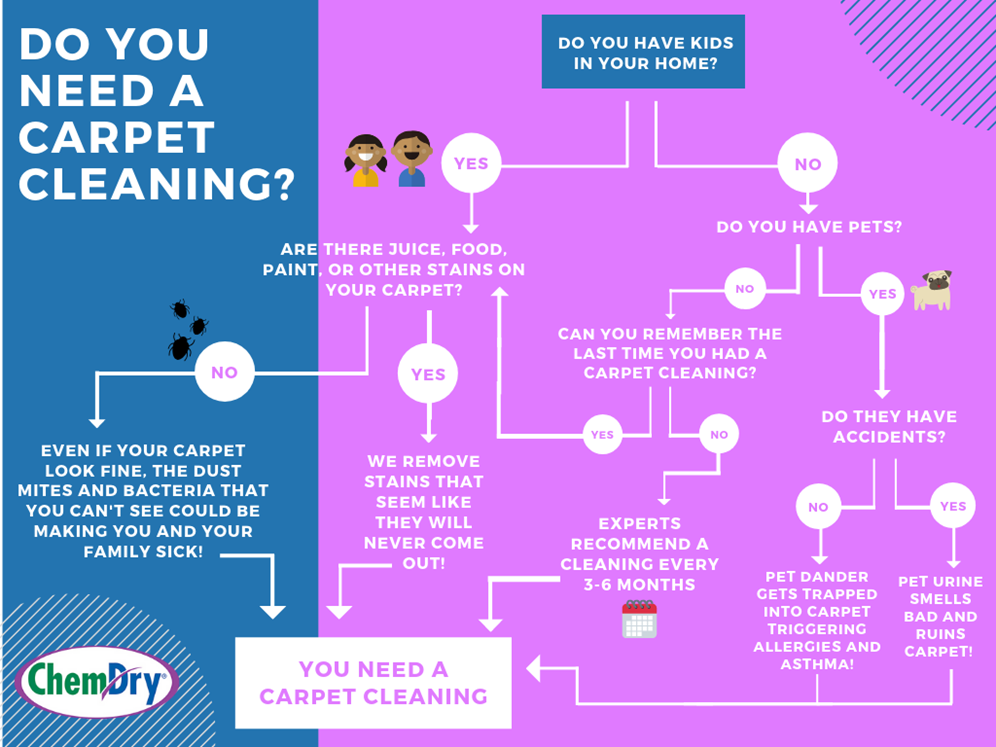 find out if you need a carpet cleaning flowchart in Fayetteville AR